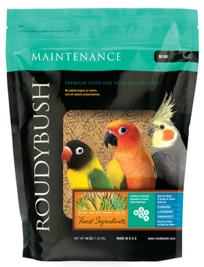 Roudybush Mini Maintenance - 22oz