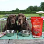 Load image into Gallery viewer, Stella & Chewy's Stella's Solutions Booster Grass-Fed Beef 13oz