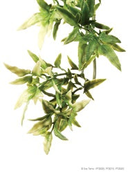 Exo Terra Jungle Plant, Terrarium Plant, medium -