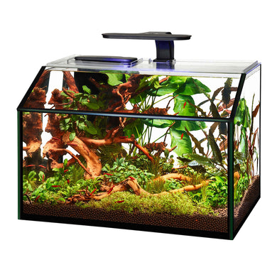 Aqueon LED Shrimp Aquarium Kit - 8.75 gal