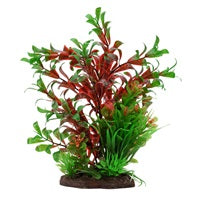 Fluval Red Ludwigia Plant Set 8in