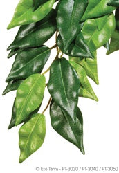 "Exo Terra Jungle Plant, Silk, small - ""Ficus"""