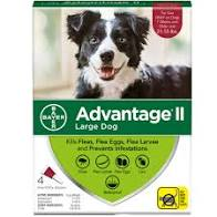 Advantage II Large Dog 4pk 2.5ml