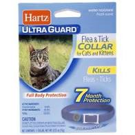 Hartz UltraGuard Flea & Tick Collar for Cats & Kittens