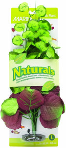 Marina Naturals Moneywort Silk Plant - Large