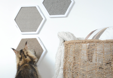 Load image into Gallery viewer, BeOneBreed Hexagonal Scratcher Carpet