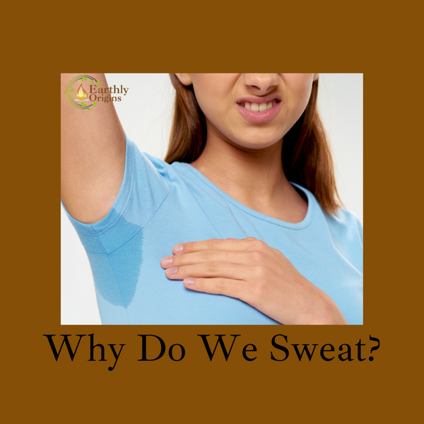 Why Do We Sweat? ( 2 minutes read)