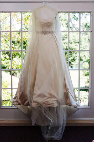 Judd Waddell Strapless Princess Pale Gold Ball Gown