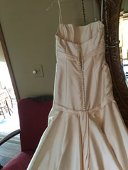 Rivini 'Silk' size 4 used wedding dress back view on hanger