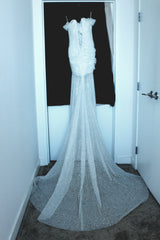 Pnina Tornai 'Glitter Draped' size 8 used wedding dress back view on hanger