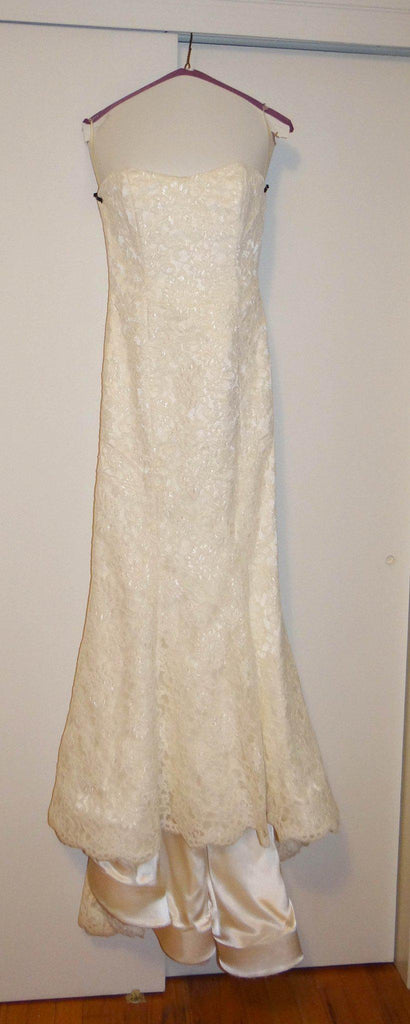 Michelle Roth Mermaid Alencon Lace Wedding Dress - Michelle Roth - Nearly Newlywed Bridal Boutique - 1