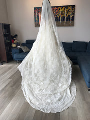 Atelier Aimee 'Alta Moda Saposa' size 0 new wedding dress back view on bride