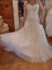 James James Clifford 'Beaded' size 10 used wedding dress front view on bride