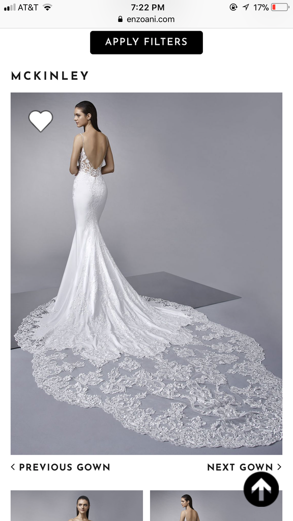 Enzoani 'McKinley' size 4 new wedding dress back view on model