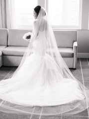 Justin Alexander '8933' size 10 used wedding dress back view on model