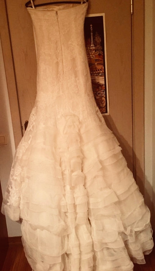 Vera Wang 'Leda' size 2 used wedding dress back view on hanger