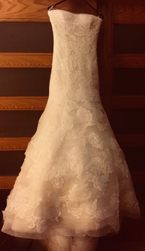 Vera Wang 'Leda' size 2 used wedding dress front view on hanger