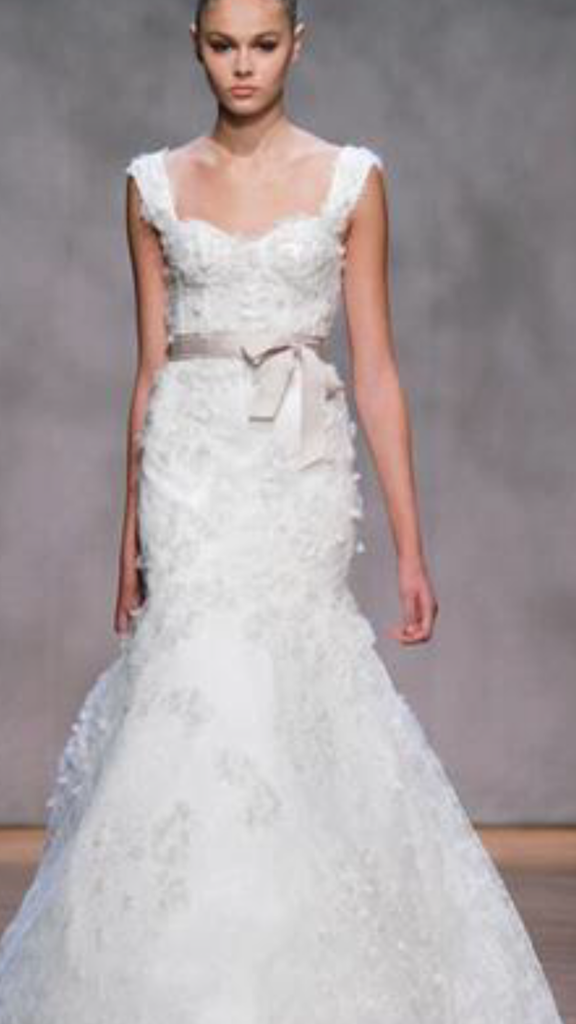 Monique Lhuillier 'Aspen' size 2 used wedding dress front view on model