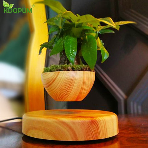 Magnetic Levitation Potted Plant