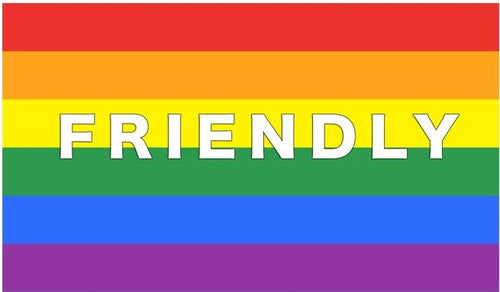 Friendly Rainbow Flag - 3x5' (90x150cm) - Big Gay Store