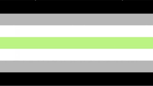 Agender Pride Flag - 3x5' (90x150cm) - Big Gay Store