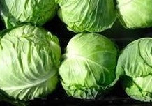Green Cabbage (quarter)