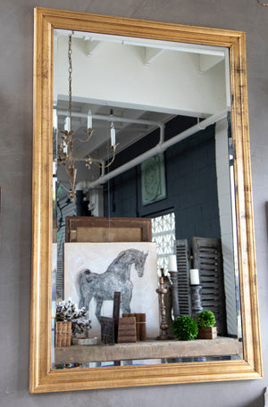 Distressed Mirror with Gold Frame from Wonderwall Home Decor