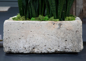 Wnderwall Hand Carved Limestone Planter Rectangular and Short