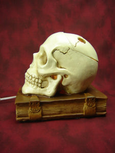 Skull on Book Aroma Lamp