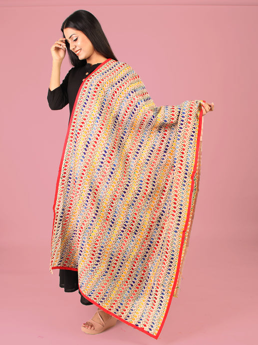 Color Blocks Phulkari Dupatta