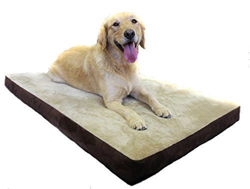 30 X 40 XL Luxury Orthopedic Lounger Pet Bed - Washable Cover / Waterproof Liner