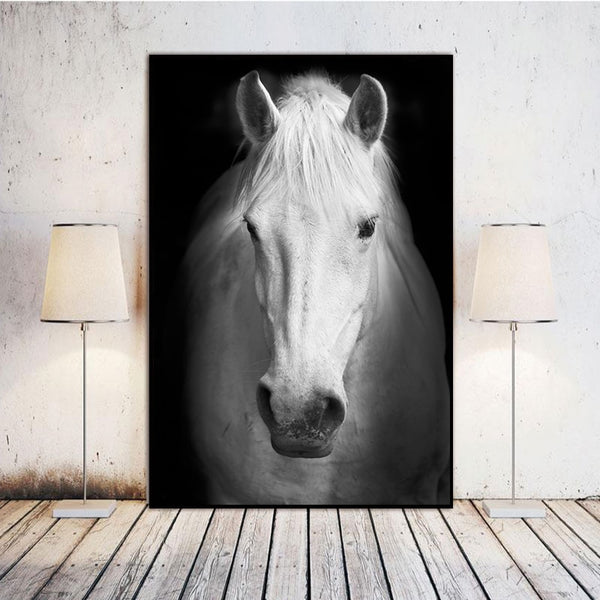 The Magnificent Safari Collection : Horse (Unframed)