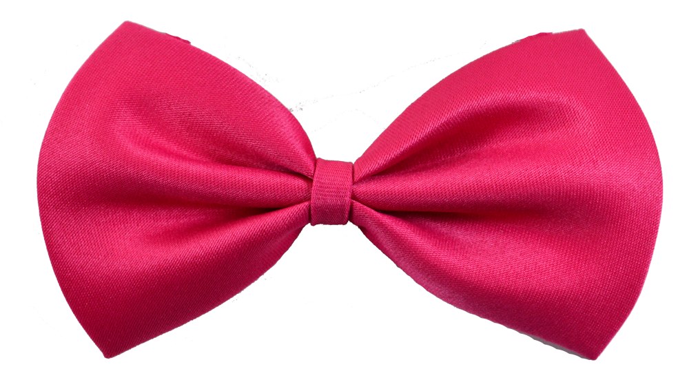 fuschia dog bow tie