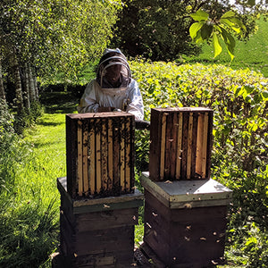 Wye Valley Honey