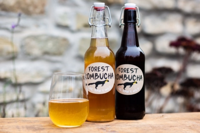 Forest Kombucha - 500ml