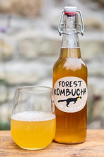 Load image into Gallery viewer, Forest Kombucha - 500ml