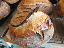 Load image into Gallery viewer, Organic Sourdough