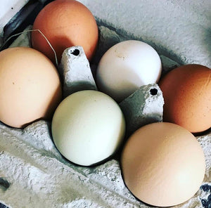 Free Range Eggs from Humble by Nature