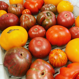Local heirloom Tomato V $2.49 est )ea ($5.49 /lb)