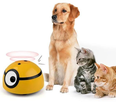 CatchMe™ Intelligent Escaping Toy | TRB