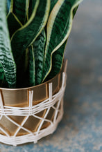 Load image into Gallery viewer, Rattan and Metal Pot, 7.75 or 9.75 inches