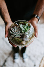 Load image into Gallery viewer, Succulent Terrariums Online