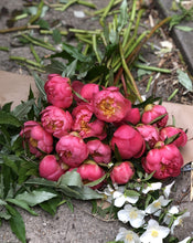 Load image into Gallery viewer, Peony Party Bouquet