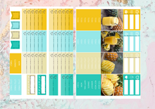 Load image into Gallery viewer, Pineapple Deluxe kit | EC Planner Stickers