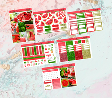 Load image into Gallery viewer, Watermelon Mini kit | EC Planner Stickers