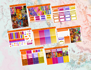 Coco Deluxe kit | Standard Vertical Planner Stickers
