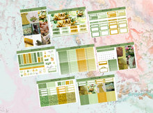 Load image into Gallery viewer, Tiana Deluxe kit | EC Planner Stickers