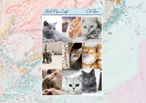 US RTS Cat lover Deluxe kit | Standard Vertical  Planner Stickers