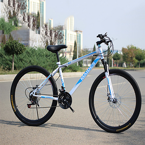 21-speed Adult Mountain Bike Road Bicycle