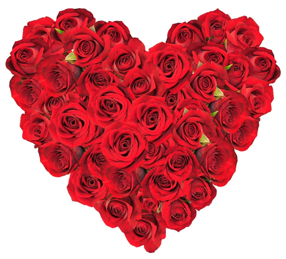 BEAUTYFULL FRESH ROSES HEART DESIGN ARRENGEMENT 48 STEMS